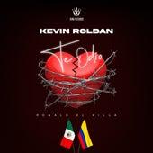 Te Odio de Kevin Roldan