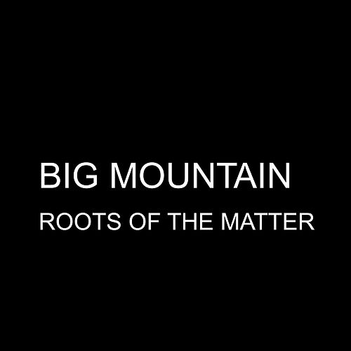 Roots of the Matter - Single by Big Mountain