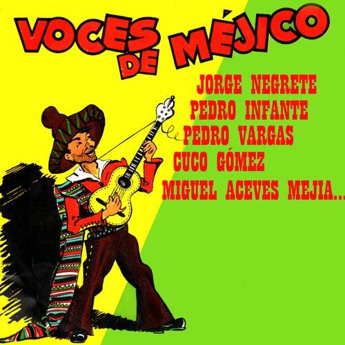 Voces de Méjico by Various Artists
