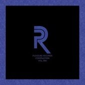 Pleasure Records Compilation, Vol. 6 by Various Artists