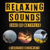 Relaxing Sounds (Sons Da Natureza) de Wenderson Nascimento