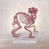 Skelethon (Clean Version) by Aesop Rock