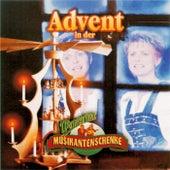 Advent in der Wernesgrüner Musikantenschenke by Various Artists