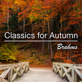 Classics for Autumn: Brahms by Various Artists