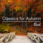 Classics for Autumn: Bach by Various Artists