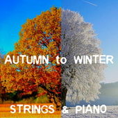 Autumn To Winter Strings & Piano by Royal Philharmonic Orchestra