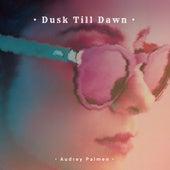 Dusk Till Dawn de Audrey Palmen