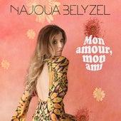 Mon amour, mon ami fra Najoua Belyzel