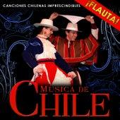 Música Chilena. Canciones Chilenas Imprescindibles by Hermanos Mapuche Chile Folk