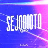 SEJODIOTO (Remix) de Treekoo