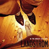 In The Bright Daylight by Landstrom
