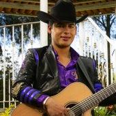 Reyna Del Pueblo (feat. Beto Vega) de Ariel Camacho