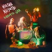 Canopic Jar de Hiatus Kaiyote