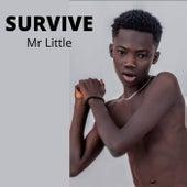 Survive by Mr Little