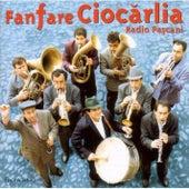 Radio Pascani de Fanfare Ciocarlia