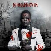 Reincarnation von Bravim