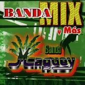 Banda Mix Y Mas de Banda Maguey