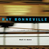 Roll It Down by Ray Bonneville