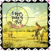 A Bigger Piece Of The Sky by Robert Earl Keen