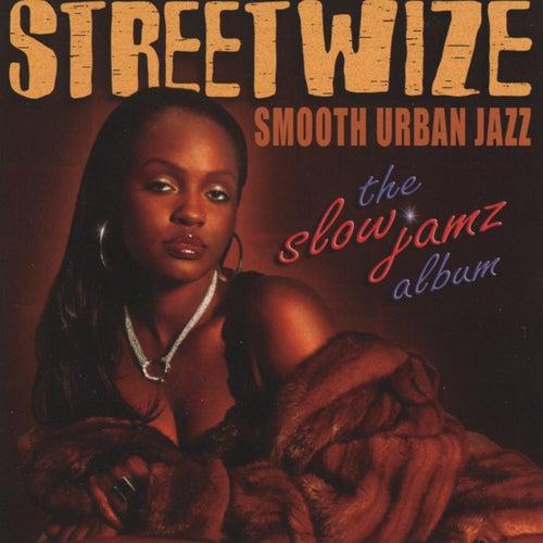 The Slow Jamz Album by Streetwize