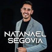 Y la hice llorar de Natanael Segovia