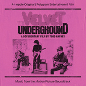 The Velvet Underground: A Documentary Film By Todd Haynes (Music From The Motion Picture Soundtrack) by Various Artists