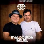 Vaqueiro Desmantelado de Evaldo Silva