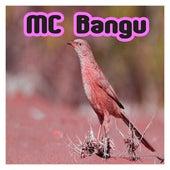 Piu de MC Bangu