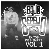 Éxitos de Siempre, Vol. 1 (Remezcla) by Bajo El Sepelio