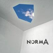 CRO9UIS de Norma