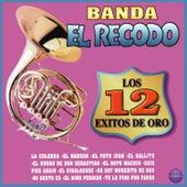 Los 12 Éxitos de Oro de Banda El Recodo De Cruz Lizárraga