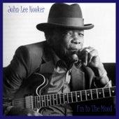 I'm in the Mood fra John Lee Hooker