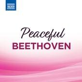 Peaceful Beethoven von Jeno Jando