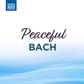 Peaceful Bach by Robert Hill