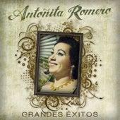 Grandes Exitos de Antonita Romero