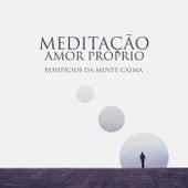 Meditação Amor Próprio (Benefícios da Mente Calma, Acalmando-se da Ansiedade com Meditação Relaxante da Música) de Meditação e Espiritualidade Musica Academia