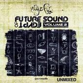 Future Sound Of Egypt, Vol. 2 (Unmixed Edits) de Various Artists