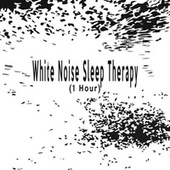 White Noise Sleep Therapy (1 Hour) by Color Noise Therapy