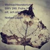 Weihnachtsoratorium, BWV 248: Frohe Hirten, eilt, ach eilet von Norbert Leppin