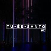 Tú És Santo by Kingdom Waves