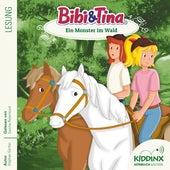 Hörbuch: Ein Monster im Wald (ungekürzt) von Bibi & Tina