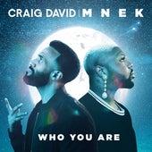 Who You Are von Craig David