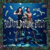 Billion Dollar Bitch (feat. Yung Baby Tate) (Swizzymack Remix) by Mia Rodriguez