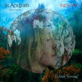 Blackbird de Elena Somarè