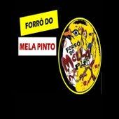 VOL. 01 von Forró Do Mella Pinto