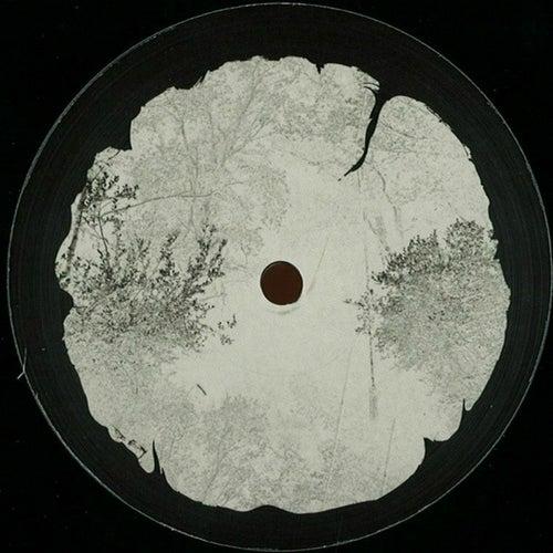 Ekko EP by Bleak