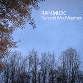 Rain Music: Rain and Wind Weather by Native American Flute