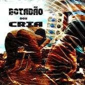 BOTADÃO DOS CRIA - HEAR ME NOW FUNK by Selton DJ