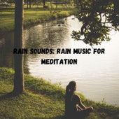 Rain Sounds: Rain Music for Meditation de Massage Tribe
