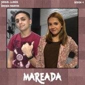 Mareada, Vol. 4 de Samuel Llanos